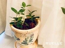 リュエル(RUELLE)/過ごしやすい空間造り♪