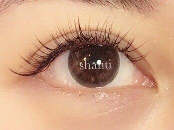 シャンティーコトニ(Shanti kotoni)/