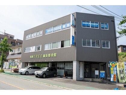 TREE 亀岡店【ツリー】