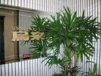 ウーライ 赤坂店(烏来)
