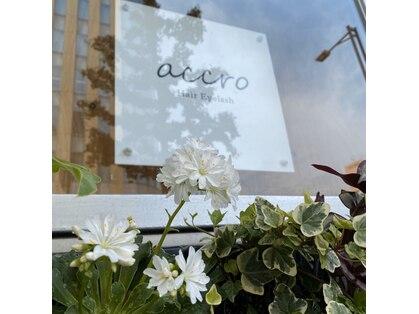 アクロ(accro)の写真