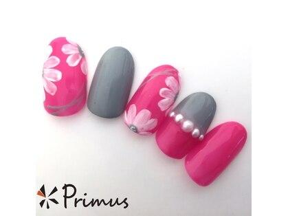 プリームスネイル&フリルアイビューティ(Primus nail&Frill Eye Beauty)の写真