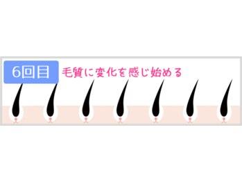 ヴィオール 名古屋栄店(VIOR)/6回目 毛質に変化を感じ始める
