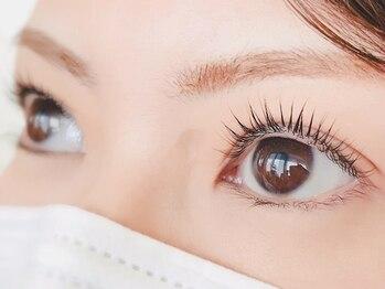 ステラアイラッシュ(Stella eyelash)/まつげパーマも大人気です