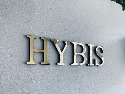 ハイビス 群馬高崎店(HYBIS)の写真