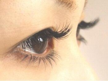 ロータスアイラッシュ(LOTUS eyelash)/140本&下まつ毛