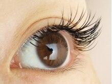 ロータスアイラッシュ(LOTUS eyelash)/Cカール100本