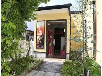 ノラサパス 高浜店(NOLASAPS)(愛知県高浜市)
