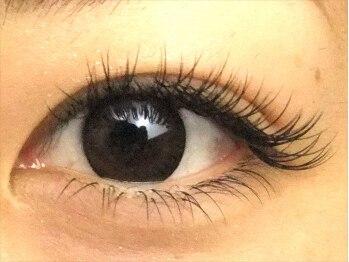ロータスアイラッシュ(LOTUS eyelash)/Cカール160本 正面