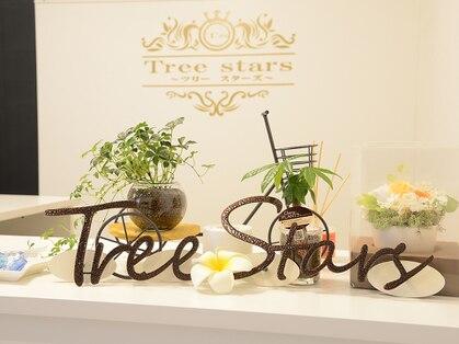 ツリー スターズ(Tree stars)の写真