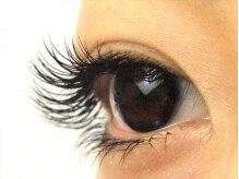 ロータスアイラッシュ(LOTUS eyelash)/Cカール160本 横から