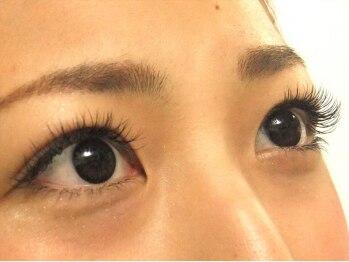 ロータスアイラッシュ(LOTUS eyelash)/Cカール160本