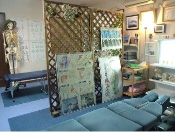 カイロオフィス健想社(北海道旭川市)
