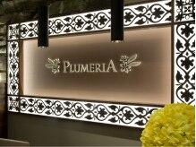 プルメリア 久留米店(PLUMERIA)の雰囲気(衛生管理の行き届いた店内。施術毎に消毒処理をしております。)