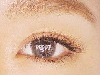 ポピーアイラッシュアンドエイジングケア(POPPY eyelash)の写真/時短でボリュームUP!さらに高技術で持ちの良さも抜群♪口コミ高評価の人気店!口コミも是非Check!