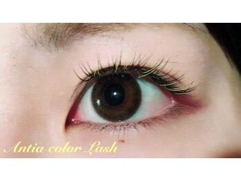 アンティア 長野駅前本店(Antia EyelashClub)/全体colorLash +1.080円