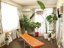 ゆずサザンクロス埼玉院(YUZU)の雰囲気(観葉植物がいっぱいの癒しの空間。)
