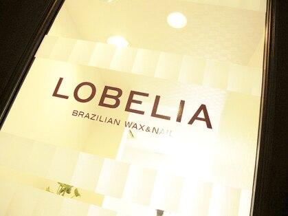 ロベリア(LOBELIA)の写真