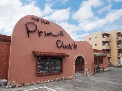 Primo Cuck
