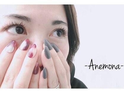 アネモナ(ANEMONA)の写真