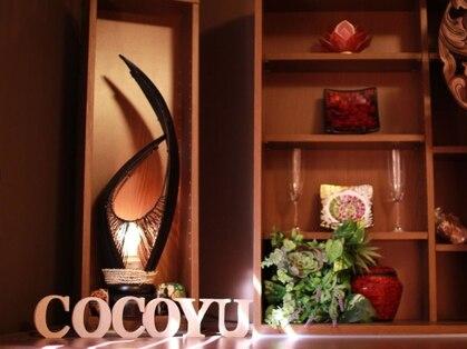 心癒(cocoyu)の写真