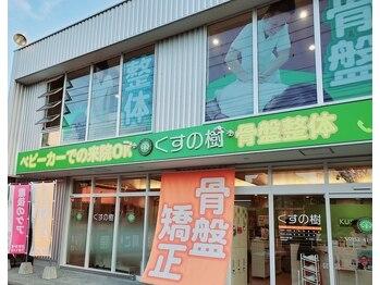 くすの樹 佐賀多布施院(佐賀県佐賀市)