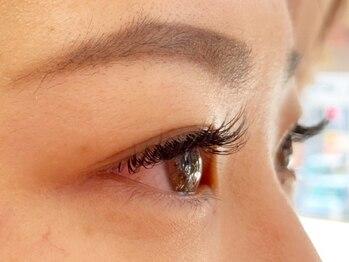アリナラッシュ(ARINA LASH)の写真/人気急上昇☆驚きのキープ力と軽い質感のフラットラッシュ◎上品なボリュームで憧れの目元を手に入れて♪