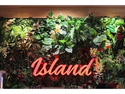 アイブロウ アンド アイラッシュ アイランド(ISLAND)の写真