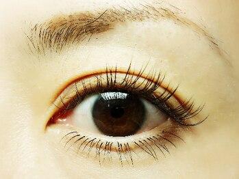 """チッリア つくば店(eye lash labo ciglia)の写真/上フルメニューの施術をされた方は【次回メンテナンス5500円付き★】お得に通えて""""いつもキレイ""""を演出♪"""