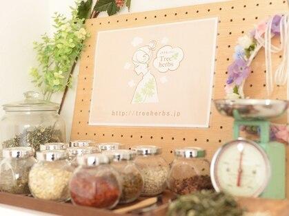 よもぎ蒸し×ハーブピーリング 肌質改善サロン Tree herbs【ツリーハーブス】