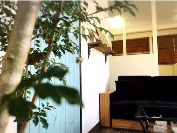カーラ アンノ 上大類(Cara anno)の写真/個室スペースのゆったりふかふかベッドでの施術☆相談もしやすく、気持ちもリラックスさせてくれます!