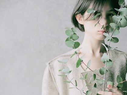 ミエル トウキョウ(miel tokyo)の写真