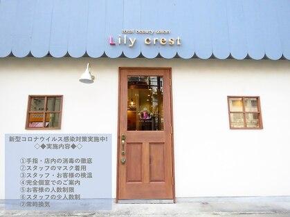 リリークレスト(Lily crest)の写真