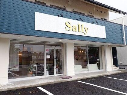 サリー(Sally)の写真