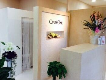 オーパスワン 伊勢崎店(OPUS ONE)