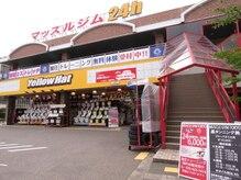 マッスルジムトーキョー 富山店(MUSCLE GYM TOKYO)の雰囲気(トレーニング体験受付中!お気軽にお問い合わせください)