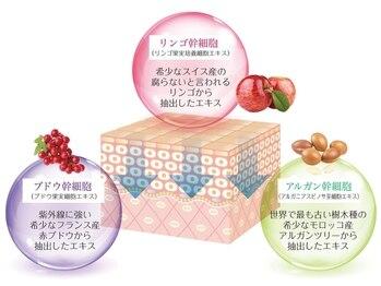 メロディ(Melody.)/3つの植物幹細胞