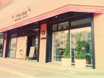 トライブ クリエートサロン(TRIBE create salon by SERVE)