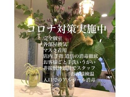 シオン(shion)の写真