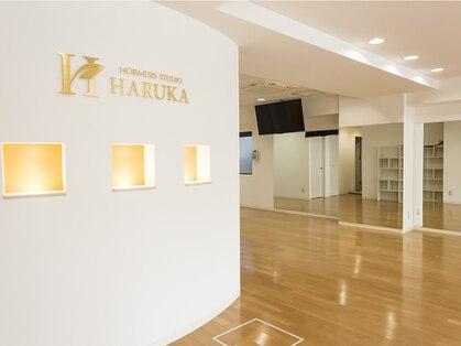 ホルミシススタジオ ハルカ(HARUKA)の写真