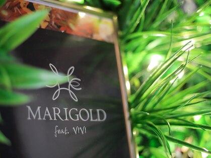マリーゴールドの写真