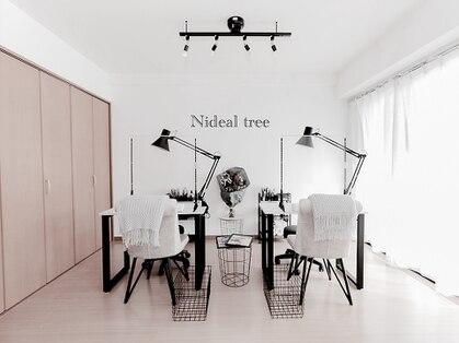 Nideal tree【ニディアルツリー】