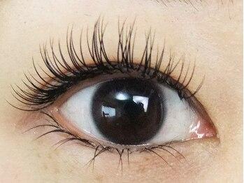 ロータスアイラッシュ(LOTUS eyelash)/【キュート】正面から