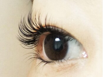 ロータスアイラッシュ(LOTUS eyelash)/【キュート】横から