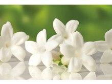 リラクゼーションサロン ジャスミン(Jasmine)の雰囲気(店内はジャスミンの香りです。香りの王様と言われています)