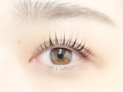 パティオアイラッシュ(Patio eyelash)の写真