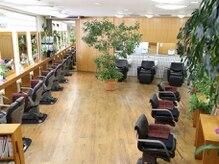 植物や自然に囲まれた店内で、心地よい空間をご提供♪