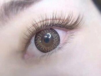 オミ(OMI)の写真/ロイヤルミンク/フラットラッシュ/カラエクなど毛質豊富☆あなたの目元になじむ毛質で魅力的な瞳に大変身♪