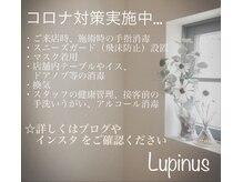 ネイルサロン ルピナス 今福店(NAIL SALON Lupinus)の詳細を見る