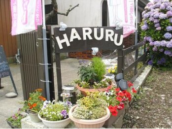 耳ツボダイエットサロン ハルル(HARURU)(茨城県那珂市)